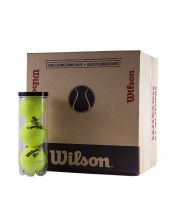 BOX OF 16 CANS 3 BALLS WILSON TP TBALL