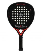 BLACK CROWN SPIDER BLACK